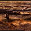 luckybeanz-4645-20141107