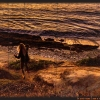 Sunset Cliff