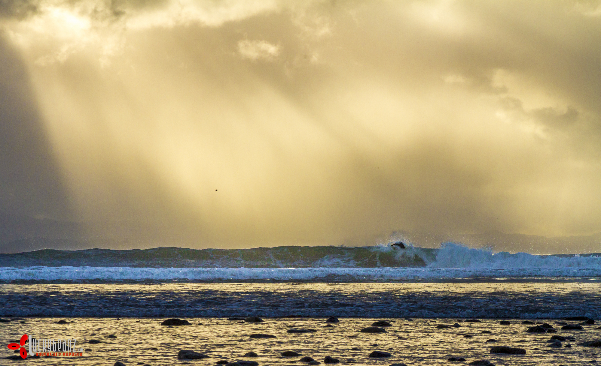 Some decent waves to be had.