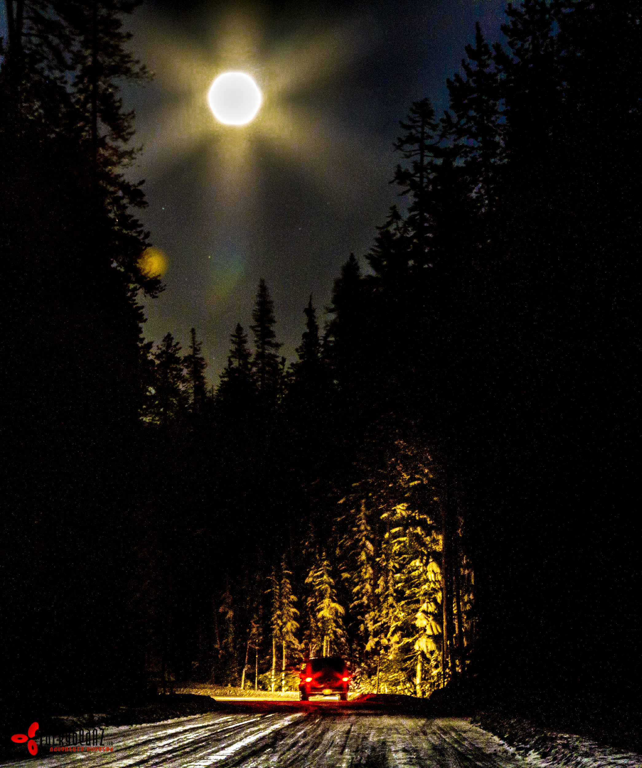Driving up to Crater lake under a full moon.