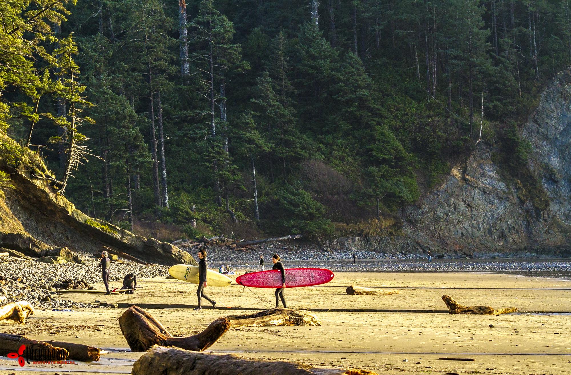 Oregon surf culture.